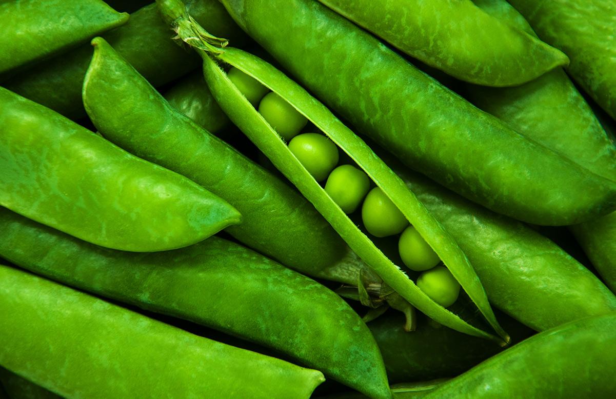 Fair peas